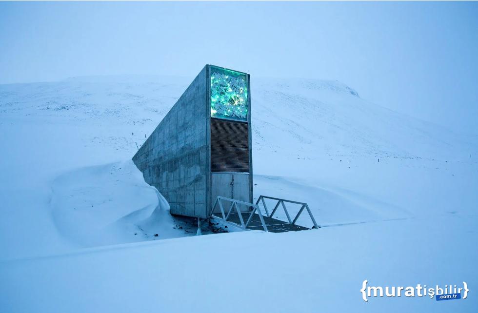 GitHub, 21 TB Büyüklüğünde Açık Kaynaklı Kodu Kuzey Kutbu'na Gömdü!
