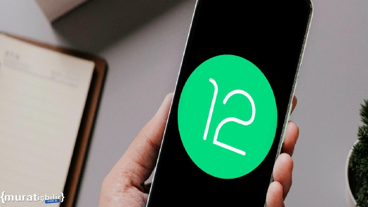 Android 12'ye Yeni Emojiler Gelecek