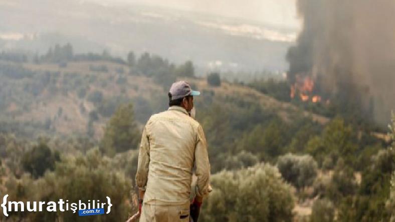 Türkiye'nin Yangınla Mücadelesinde Son Durum