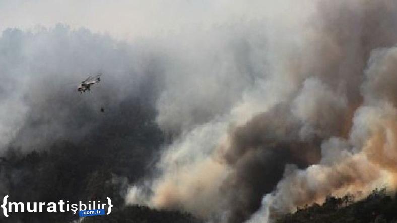 Yangınlara Müdahale İçin Kullanılan Araç Sayısı Açıklandı