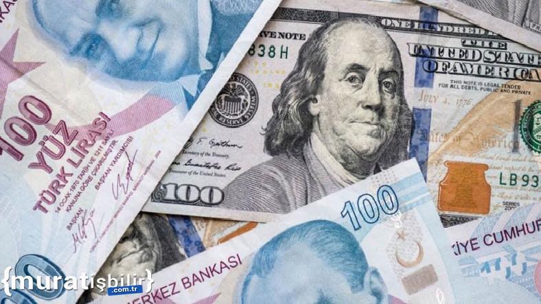 Merkez Bankası Yıl Sonu Dolar, Enflasyon Tahminini Açıkladı