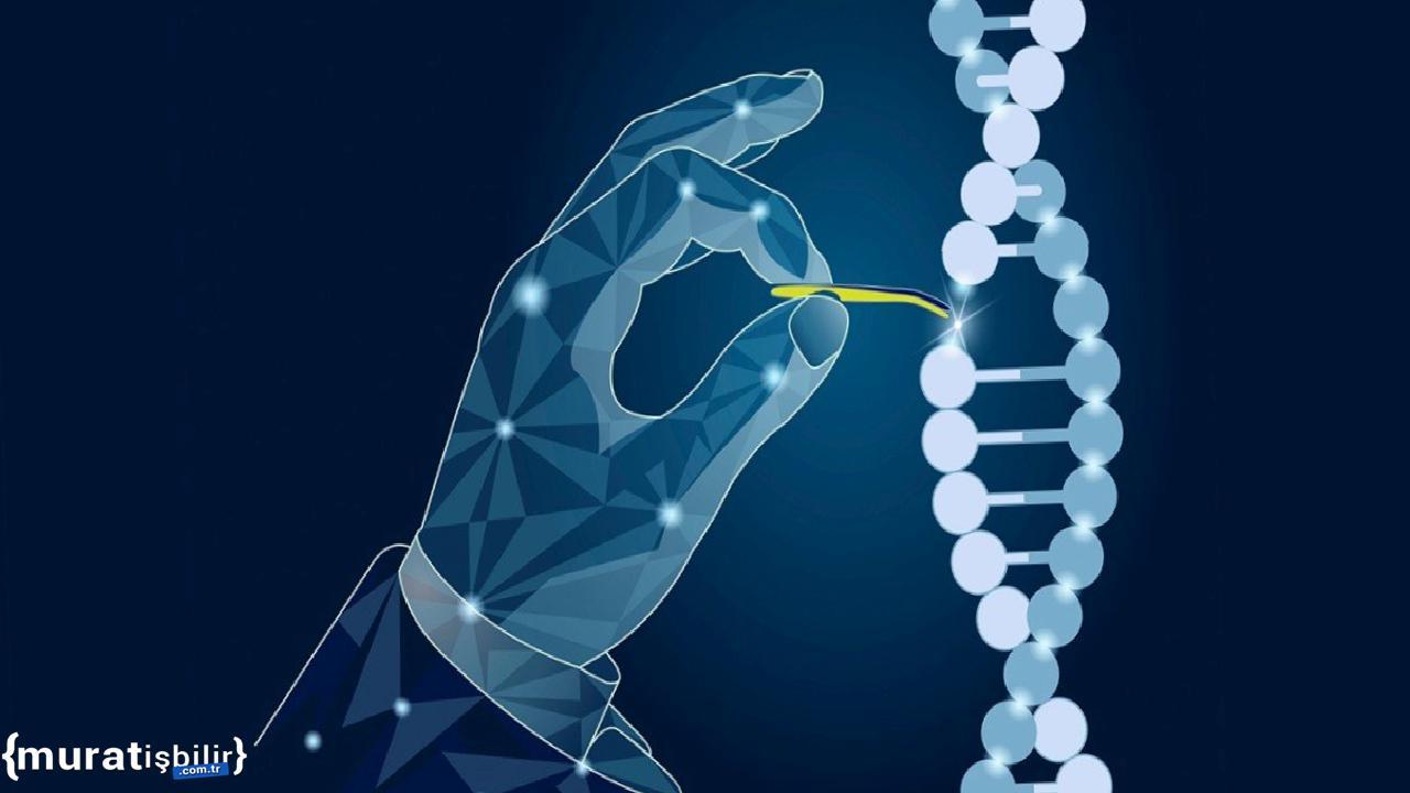 Stanford, CasMINI Gen Düzenleme Sistemini Geliştirdi