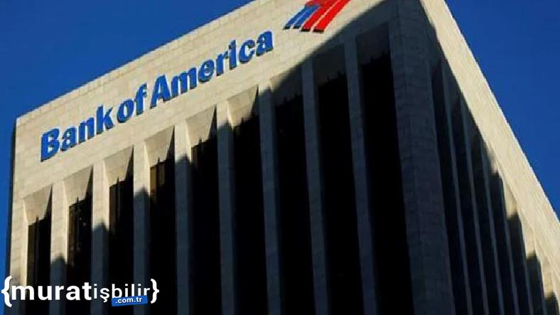 Bank of America'ya Erişimde Sorunlar Yaşanıyor