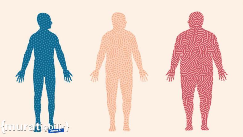 Obezite, COVID-19 Ölüm Oranını Artırıyor