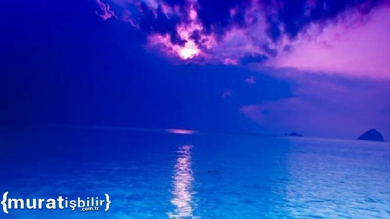 Okyanusun Ortasındaymışsınız Gibi Hissettiren Site