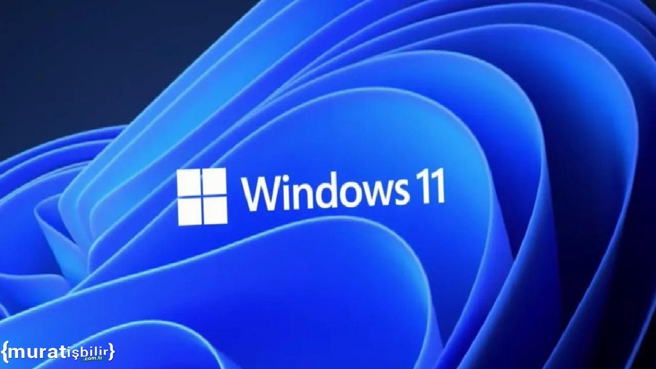 Windows 11 IoT Kurumsal Çıktı